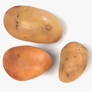 3d model potatos