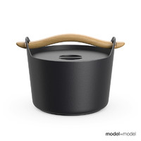 cast iron pot max