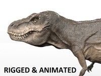 Trex - Rigged and Animated
