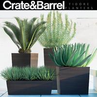 3d model of plants 82
