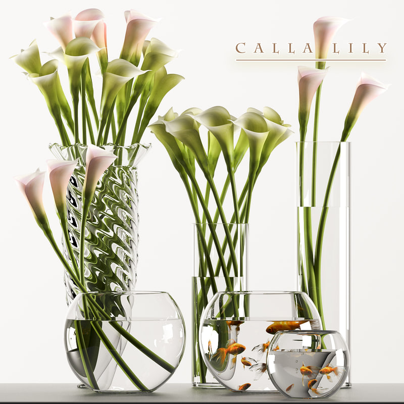 3d model calla lilly flowers