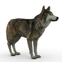 Timber Wolf Animated