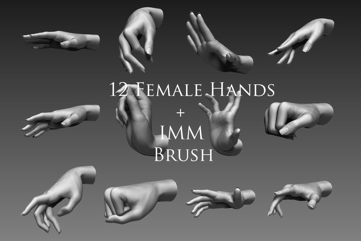 3d female hands 12 model