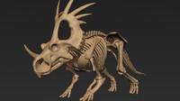 styracosaurus triceratops skeleton max