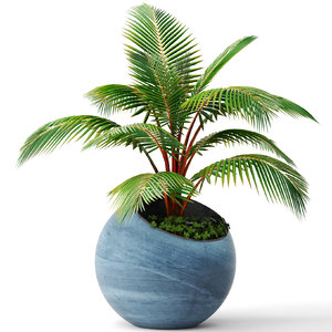 coconut palm 3d max