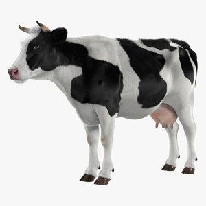 3d cow realistic model