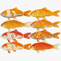3d model koi fishes