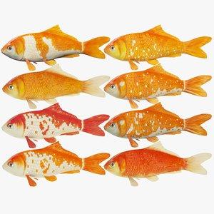 3d model koi fishes