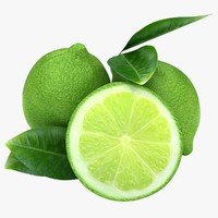 3d realistic lime