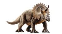 triceratops corona 3d model