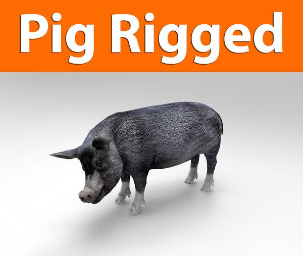 pig rigged 3d max