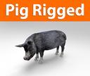 pig rigged(1)