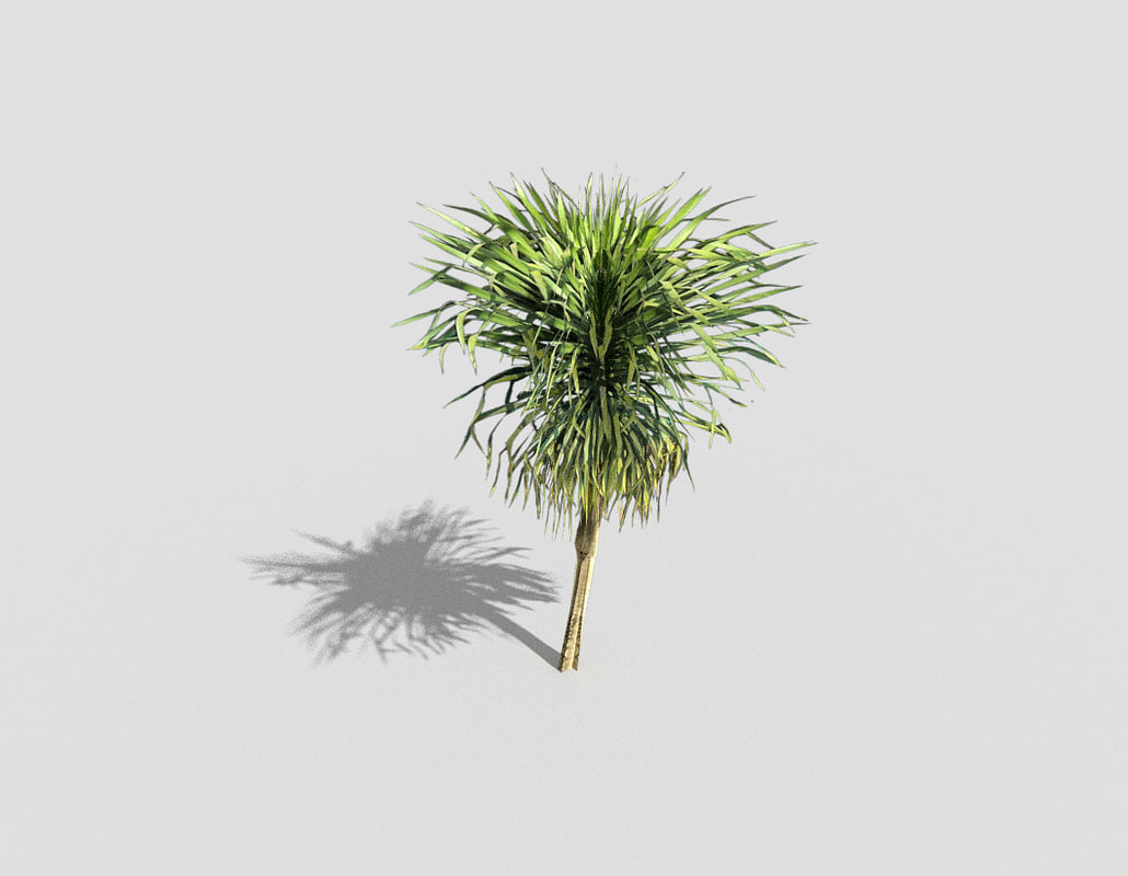 tree tropical 3d 3ds