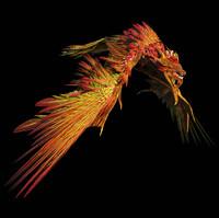 3d chameleon dragon rigged flying animation