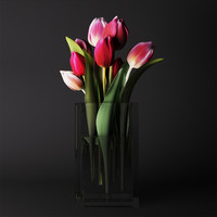 Flowers Bouquet of tulips