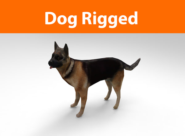 3d german shepherd dog rigged model
