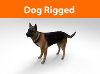 3d model of german shepherd dog rigged
