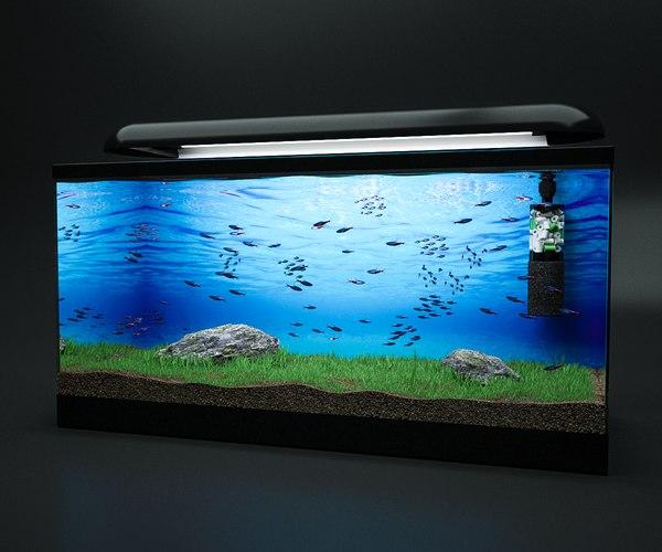 fish tank 3ds