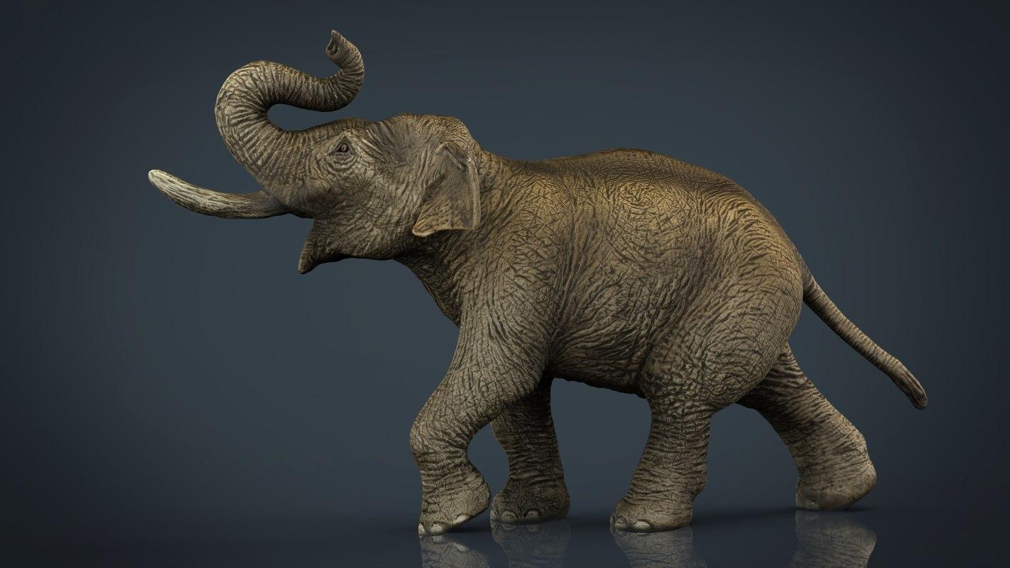 3d asian elephant