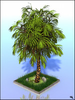 palm tree 3d obj