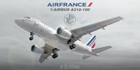 max a318-100 air france