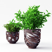 Two Plants in Modern Metall Pots