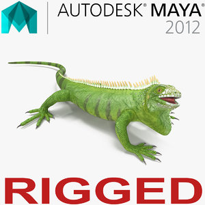 green iguana rigged 3d ma