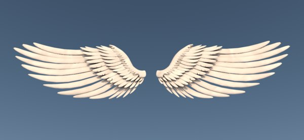 3d wings character feathers model