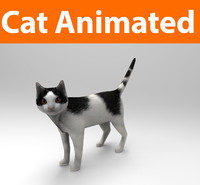 cat animations 3d model