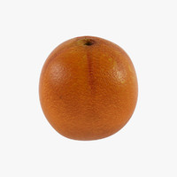 3d orange fruit model