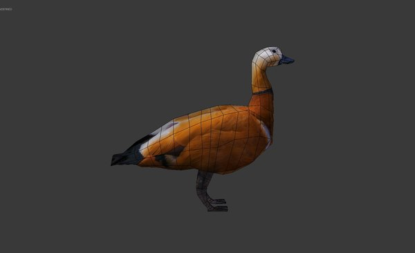 duck 3d 3ds