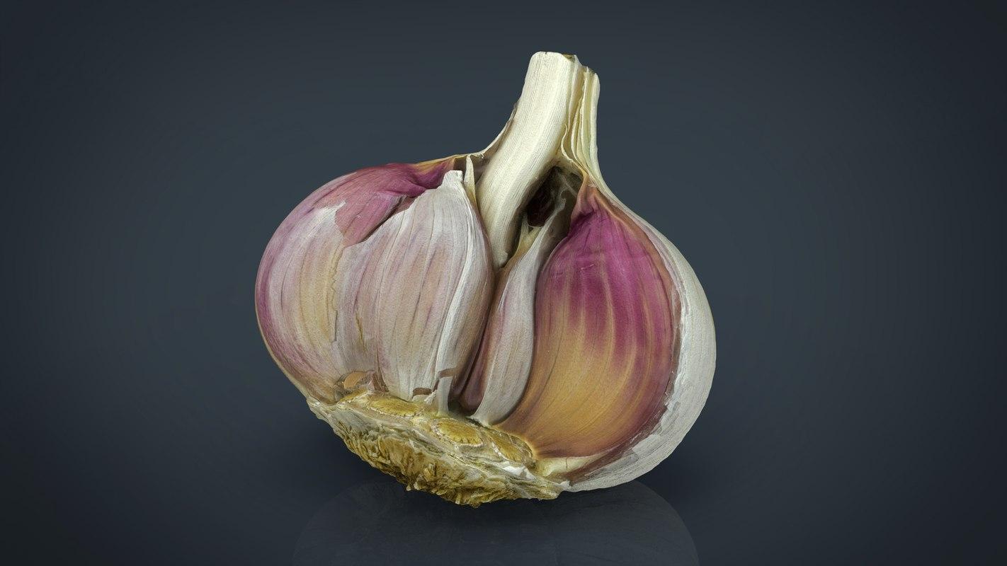 photorealistic open garlic 3d model