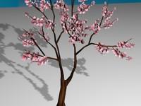 sakura tree 3d max