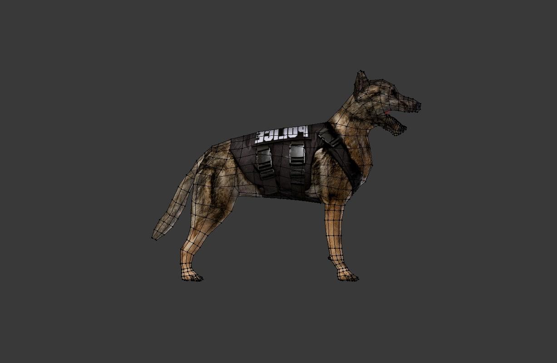 3ds dog
