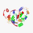 enzyme 3D models