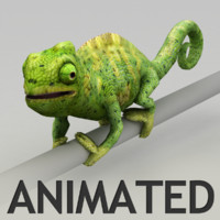 Chameleon animated model