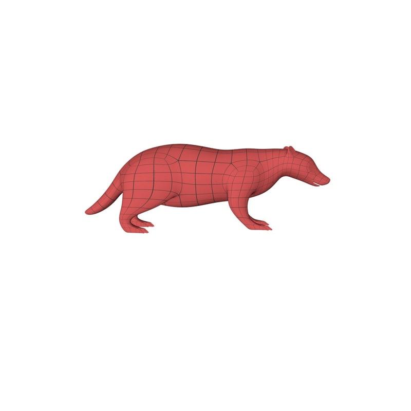 base mesh badger 3d obj