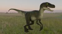 velociraptor raptor 3d model