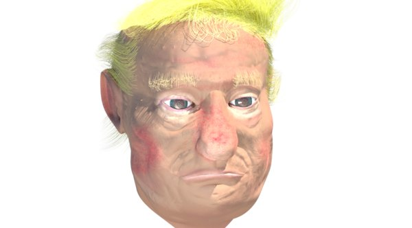 3d amateur donald trump