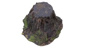 tree stump 01 3d model