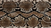 Snake leather pattern 1