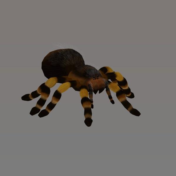 tarantula blend