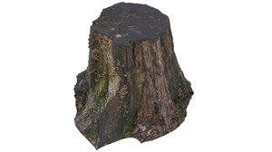 tree stump 02 3d 3ds