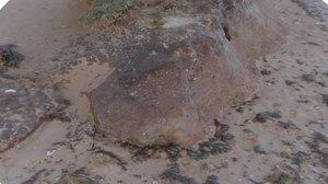 obj beach mud mound -