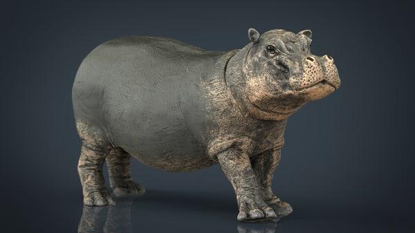 3d hippopotamus mouth closed