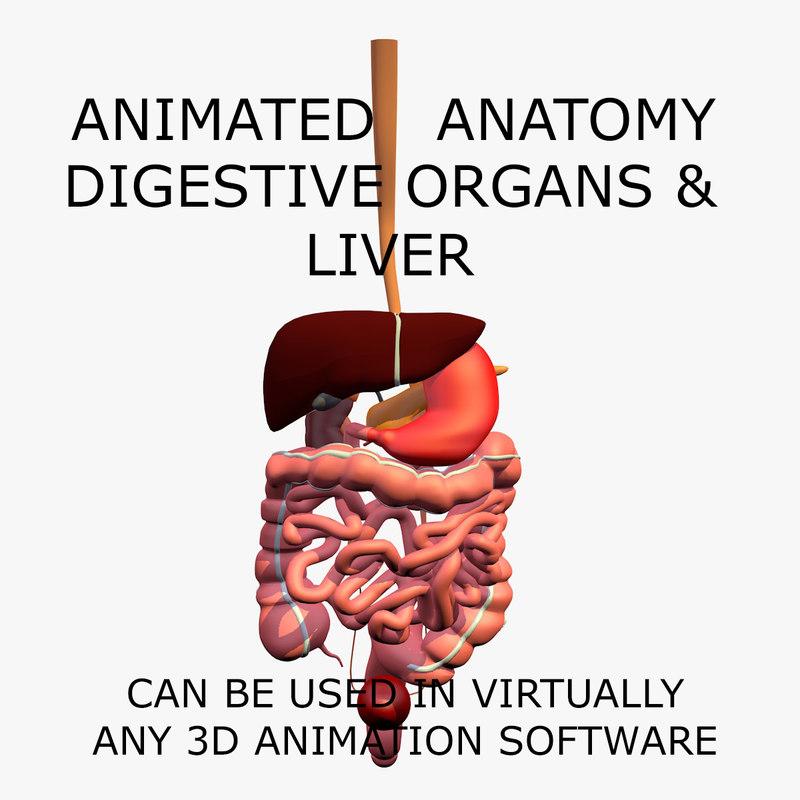 Niedlich 3d Anatomie Software Fotos - Menschliche Anatomie Bilder ...