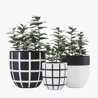 design grid pot 3d model