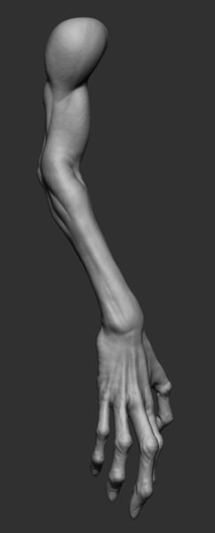 obj creature arm