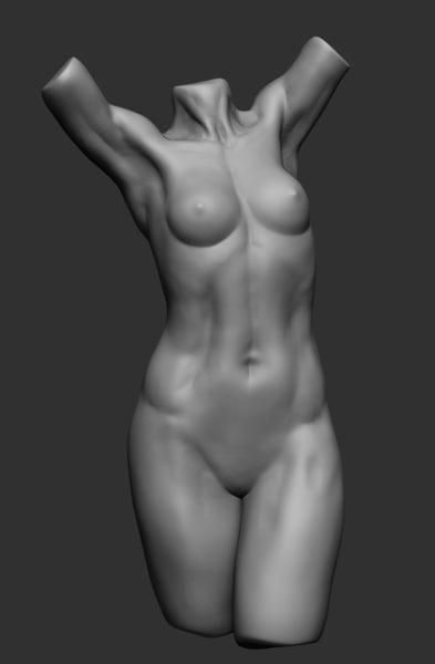 female torso 3d obj