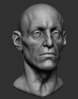 male head base anatomy obj